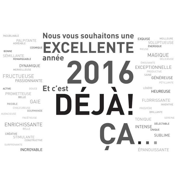 voeux-2016-01.indd